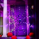 Halloween Spider Web Lights with Huge Spider Waterproof 60 LED Purple Lights and Black Net for Porch Yard Bar Haunted House Window Decor Indoor and Outdoor Scary Party Halloween Decoration