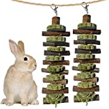 2PCS Bunny Chew Toys for Teeth Grinding, Chinchilla Treats Organic Bamboo Sticks Natural Fruitwood Branches for Rabbits Guinea Pigs Hamsters (Fruitwood Sticks+Alfalfa Cakes)