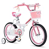Royalbaby Jenny Princess Pink Girls Bicycle with Training Wheels and Basket, Best Gifts for Girls. 12 Inch, 14 Inch, 16 Inch Avaliable (Pink, 12 Inch)