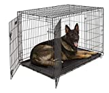 XL Dog Crate MidWest ICrate Double Door Folding Metal Dog Crate w/ Divider Panel|XL Dog Breed, Black