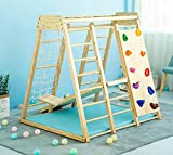 Indoor Toddler & Child Indoor Gym Playground Climber Real Wooden Playset 6-in-1 Slide, Rock Climb Wall, Rope Wall Climbing, Monkey Bars, Swing, Ladder Fun Gym for Children Ages 2 - 6yrs by Avenlur