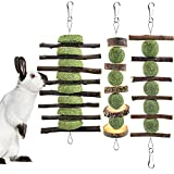 ERKOON 3PCS Bunny Chew Toys, Rabbit Chew Toys for Teeth Grinding, Improve Dental Health, 100% Natural Apple Wood Timothy Grass Cake Treats for Rabbits Bunnies Hamsters Chinchillas Guinea Pigs