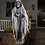 Halloween Hanging Ghost, 5.5 Ft Large Life size Halloween Prop Skull with LED Glowing Eyes and Creepy Shrilling Sound Scary Grim Reaper with Detachable Bendable Arms Perfect for Halloween Party Decor