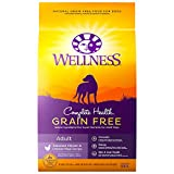 Wellness Natural Pet Food Complete Health Natural Grain Free Dry Dog Food, Chicken, 24-Pound Bag