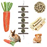 4 Pack Rabbit Chew Toys for Teeth, Bunny Chew Treats, 100% Natural Apple Wood Sticks Timothy Hay Balls Loofah Carrot Sweet Bamboo Toys for Bunnies/Chinchillas/Guinea Pigs/Hamsters