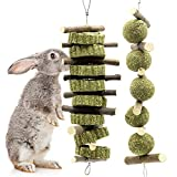 Bunny Chew Toys for Teeth, Molar Rabbit Toys Natural Organic Apple Sticks for Rabbits, Chinchillas, Guinea Pigs, Hamsters Chewing Playing Improve Dental Health