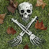 Eunvabir Skeleton Halloween Decorations 3 PCS, Life Size Skeleton Stakes Skull and Arms for Outdoor Yard Lawn and Graveyard Decor Party Supplies