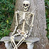 5.4ft Halloween Skeleton Life Size, RealisticPosable Full Body Hanging Adult Human Skeletons Skull Scientific Bones Models with Movable/Poseable Joints for Best Halloween Props Party Decor Decoration