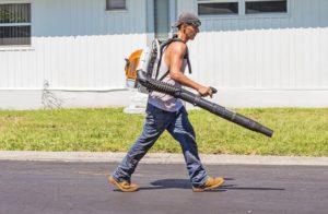 Best Electric Leaf Blowers